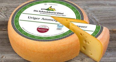 Uriger Ammergauer